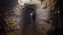 Nga cáo buộc một số nước phương Tây muốn duy trì hang ổ khủng bố ở Idlib