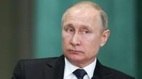 Tổng thống Nga Putin chỉ sở hữu 267m2 đất và nhà ở