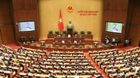 Đại biểu Quốc hội đoàn Nghệ An: Tránh tùy tiện, tiêu cực trong xét tuyển công chức, viên chức