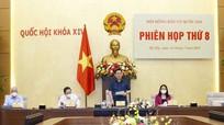 Thông qua Nghị quyết xác nhận tư cách đại biểu Quốc hội khóa XV với 499 người trúng cử