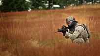 """Quân đội Mỹ tuyên chiến với... """"cỏ Nga""""!"""