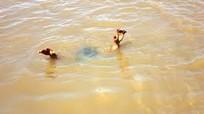 Bé trai 3 tuổi đuối nước thương tâm tại ao nhà