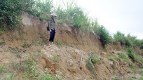 Sạt lở bờ sông Giăng, nông dân đứng trước nguy cơ mất đất sản xuất