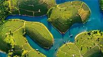 Đẩy mạnh kích cầu và liên kết du lịch giữa Bình Định và Nghệ An