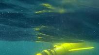 Phát hiện vùng nước chết rộng hàng ngàn kilomet ở biển Ả rập