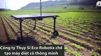 Cỗ máy diệt cỏ thông minh giúp bảo vệ cây trồng