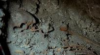 Phát hiện bộ xương của nữ hoàng Maya bí ẩn