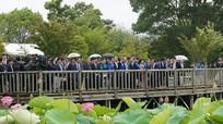 Thủ tướng Nguyễn Xuân Phúc: Việt - Nhật 'tình thân sâu sắc thắm màu, không phai'