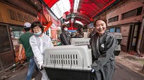 Chợ thịt chó lớn bậc nhất Hàn Quốc bị đóng cửa