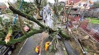 Siêu bão Goni càn quét Philippines: Ít nhất 4 người thiệt mạng, 31 triệu người bị ảnh hưởng