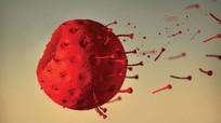 Chuyên gia quốc tế nhận định thời điểm dịch Covid-19 có thể chấm dứt