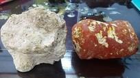 Những hòn đá lạ, giá hàng tỷ đồng