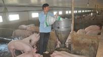 Giá thịt lợn tăng 200%, đắt nhất thế giới: Bộ Nông nghiệp ra công văn hỏa tốc