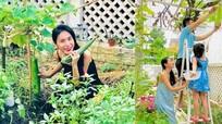 Rau quả sạch đủ thứ trong vườn nhà của Công Vinh - Thủy Tiên