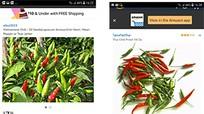 Ớt Việt được rao bán trên Amazon 670.000 đồng/kg