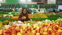 Việt Nam chi hơn 5,4 triệu USD mỗi ngày nhập hoa quả dịp cận Tết