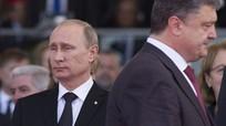 Nga hy vọng khôi phục hòa bình với Ukraine; Anh đề nghị EU lùi Brexit đến tháng 6