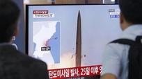 Nga tập trận quy mô lớn ở Biển Baltic; Triều Tiên tiết lộ vũ khí vừa thử