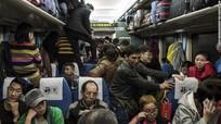 Hiểm họa dịch bệnh giữa cuộc di cư lớn nhất hành tinh