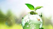 Tôn trọng thiên nhiên để bảo vệ trái đất