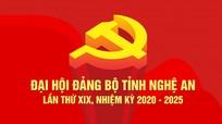 Danh sách phân bổ đại biểu dự Đại hội Đảng bộ tỉnh Nghệ An lần thứ XIX, nhiệm kỳ 2020 - 2025