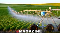 Tổ chức thực hiện nhiệm vụ phát triển nông nghiệp theo Nghị quyết Đại hội XIII của Đảng