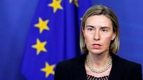 EU có thể sử dụng lực lượng phản ứng nhanh lần đầu tiên trong năm nay