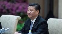 Chủ tịch Tập Cận Bình nói về quan hệ Mỹ-Trung