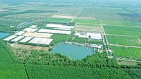 Chiến lược để dẫn đầu thị trường của 'triệu phú sữa tươi' Việt Nam