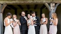 Cô dâu chú rể không cầm hoa cưới mà bế cún cưng trong hôn lễ