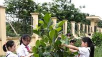 'Chiến dịch trồng cây xanh' cùng Vinamilk lan tỏa trên mạng xã hội