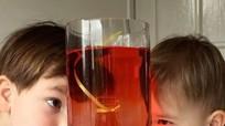 Học ông bố Anh gắn kết con cái bằng các thí nghiệm đơn giản tại nhà