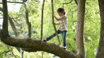 Chơi đùa 'mạo hiểm' giúp trẻ khám phá giới hạn của bản thân
