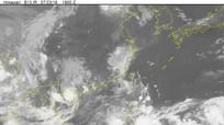 Thông tin mới nhất về áp thấp nhiệt đới trên đất liền