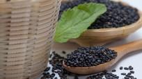 Điểm danh 10 thực vật thông dụng cực giàu canxi