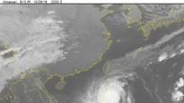 Siêu bão Yutu vào Biển Đông, cách quần đảo Hoàng Sa khoảng 650km