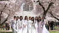 Cảnh báo lừa đảo, cung cấp thông tin sai lệch về du học Nhật Bản