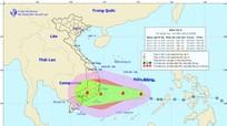 Áp thấp nhiệt đới đã mạnh lên thành bão số 9 giật cấp 10