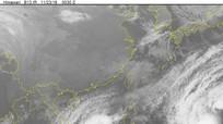Thông tin mới nhất về bão số 9 đang tiếp tục mạnh lên
