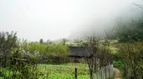 Thời tiết 14/3: Không khí lạnh tăng cường, Bắc Trung Bộ có mưa rào và rải rác có dông