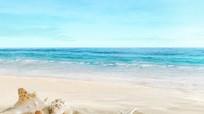 Những mầm bệnh tiềm ẩn từ cát biển không thể thờ ơ