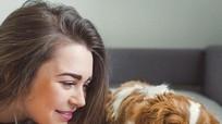 Cách phòng tránh 4 bệnh nguy hiểm từ chó mèo cho chủ nhà