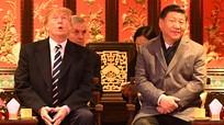 Tổng thống Trump mắc sai lầm khi nhất trí thỏa thuận đình chiến thương mại với Trung Quốc