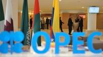 """Qatar rút lui: """"Điềm xấu"""" cho OPEC"""