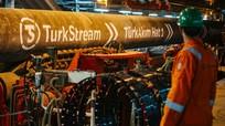 """Tổng thống Putin cho phép Hy Lạp tham gia """"Dòng chảy Thổ Nhĩ Kỳ"""""""