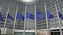 Ủy ban châu Âu sẽ hợp tác với bất kỳ ai trở thành tổng thống Ukraine