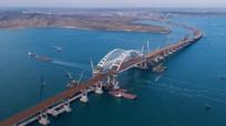 Hỗ trợ Syria, Crimea đã nhận 46 tấn dầu oliu đầu tiên