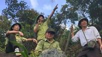 Truy tìm thủ phạm giăng gần 400 bẫy thú trên núi Hồng Lĩnh