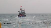 Nghệ An: Chìm tàu cá, ngư dân ôm can nhựa bơi 2 giờ trên biển tìm cứu hộ
