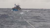 Thuyền viên Nghệ An nghi mất tích khi đánh bắt hải sản trên biển